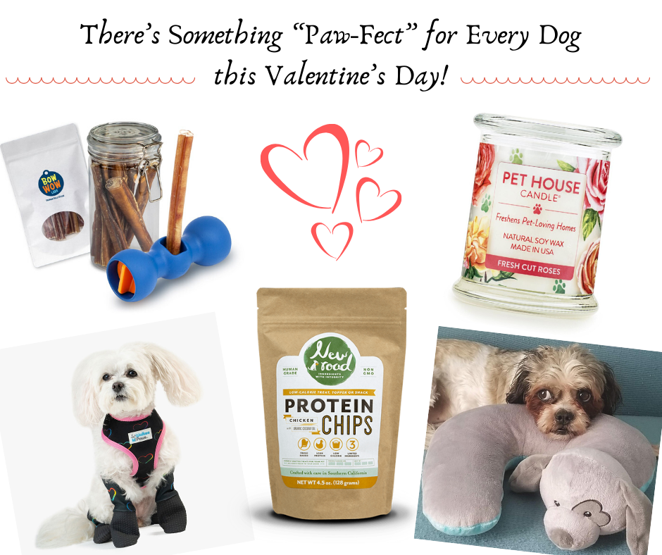 """There's Something """"Paw-Fect"""" for Every Dog this Valentine's Day!"""