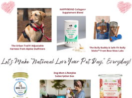 """Let's Make """"National Love Your Pet Day,"""" Everyday!"""